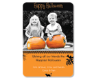 Picture Pumpkins Halloween Photo Card